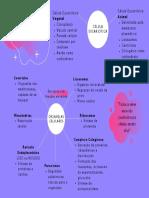 Biologia(28.07); Núbia Antunes Des41M