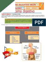 sistema digestivo 3º psf