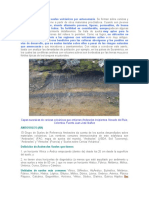 Los Andosoles son los suelos volcánicos por antonomasia