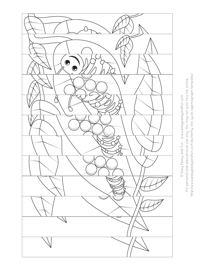 Butterfly Life Cycle Agamograph Template Version 1 Ilovepdf Compressed Pdf