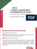 Tema III _ Fusiones y liquidaciones