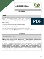 Plan de negocio El Viajano.doc