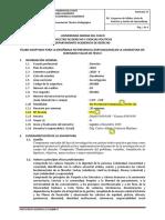 silabo_Derecho II_2020-2 (1)