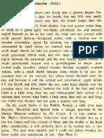 Beddome (1870)-Description of Sphenocephalus pentadactylus