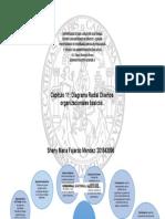 Diagrama Radial +Sheny.docx