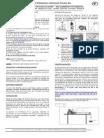 Guía Física 10°