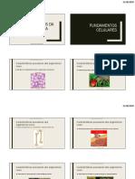 Fundamentos da Bioquímica.pdf
