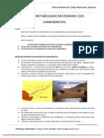 UA 9 – METABOLISMO MICROBIANO DOS CARBOIDRATOS.