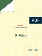 Unidad 1 - Liderazgo Directivo -