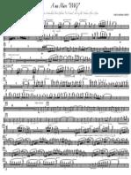 A ma Mare IMG -Flauta 1 i 2.pdf