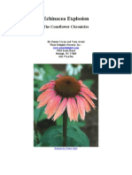 Echinacea - Purple coneflowers and much more