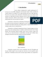 Virtualization-report