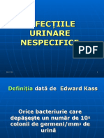 Infectiile Urinare Nespecifice