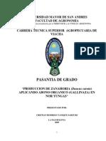 "TESIS PRODUCCION DE ZANAHORIA (Daucus carota) APLICANDO ABONO ORGANICO (GALLINAZA) EN NOR YUNGAS"""