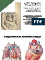 Хирургическая анатомия сердца и сосудов