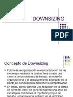 DOWNSIZING presentacion