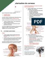 Copie de Vascularisation du cerveau.pdf