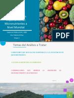 Presentación Investigación sobre las Deficiencias más importantes de Micronutrientes a Nivel Mundial 1