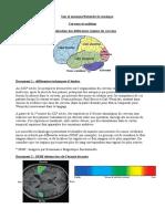 Act 3 cerveau et audition.pdf