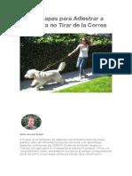 44893589.pdf