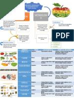 conceptualizacion de los alimentos