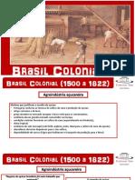Brasil Colônia Agroindústria açucareira e Sociedade (Tom).pdf