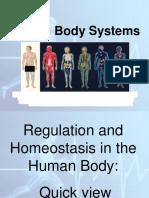 17reveiwHuman Body Systems ppt.pdf