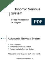 AutoNerveSystem.ppt