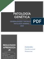 1594853492782_Clase 1 genética
