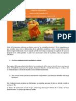1roI-Geo-Act Extractivas II Paula Carrizo
