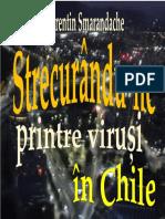 Strecurându-ne printre viruși în Chile