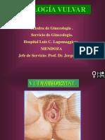 Vulva UDA.pdf