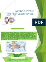 APARATO CIRCULATORIO EN LOS INVERTEBRADOS.pptx