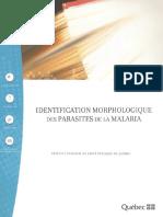 372-IdentificationMorphologiqueParasitesMalaria.pdf