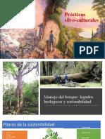 UNIDAD 3 Prácticas bioculturales.pptx
