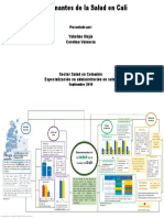 Mapa conceptual determinantes de la salud en Cali-Yakeline Mejia,Carolina Valencia