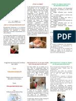 triticodiscapacidadintelectual-120408010417-phpapp02.pdf
