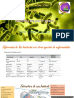Bacterias_Gram_+[1]