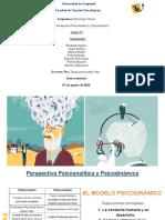 PERSPECTIVA PSICOANALÍTICA Y PSICODINÁMICA