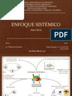 ENFOQUE SISTÉMICO - PRINCIPIOS. GRANADOS FELIPE