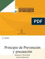 EA_EC2_AEAE2_ Principio Prevención y Precaución.pptx