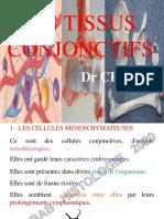 4-TISSU CONJONCTIF  PROPREMENT DIT diapo - 2019 - 2020