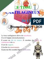5-TISSU CARTILAGINEUX DIAPOS - 2 - MED 2020