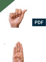Abecedario LSM real GDE.pdf