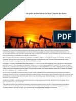 2020-08-29-13-Senadores criticam venda de polo da Petrobras no Rio Grande do Norte — Senado Notícias