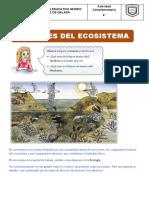 Factores-del-Ecosistema-para-Quinto-Grado-de-Primaria