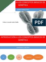 GENETICA BASICA LEO biologia.pdf