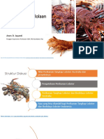 Pengenalan Pengelolaan Perikanan Lobster di Tasmania