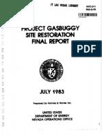 pne G90 Gasbuggy
