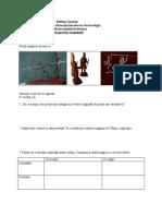 IX.1. Reflexia fisa lectia 1 activitatea 2.doc